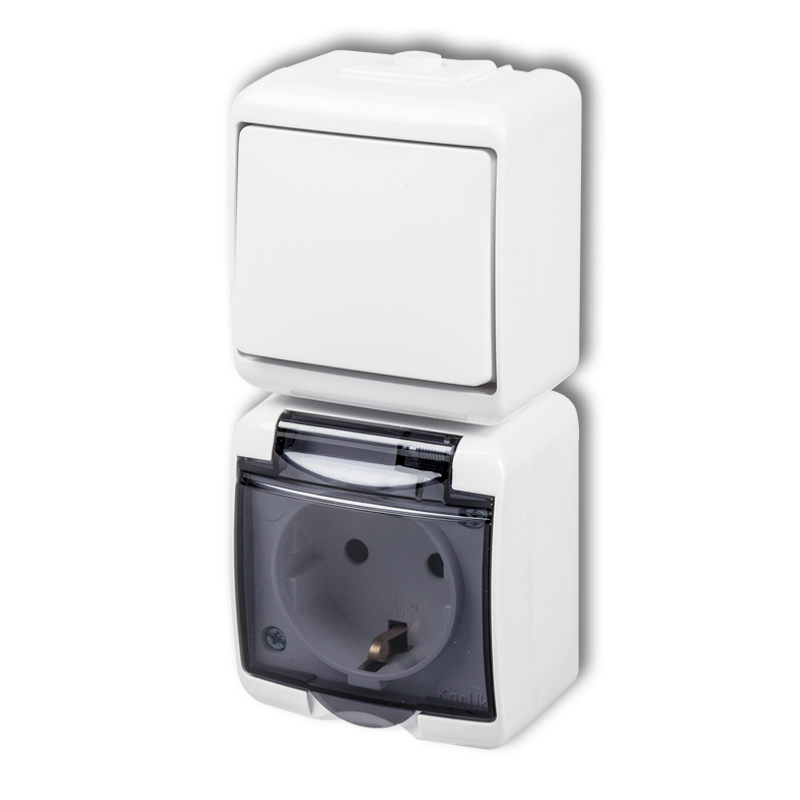 Single pole switch with single socket with earth SCHUKO 2P+Z (shaded transparent cover, child protection)